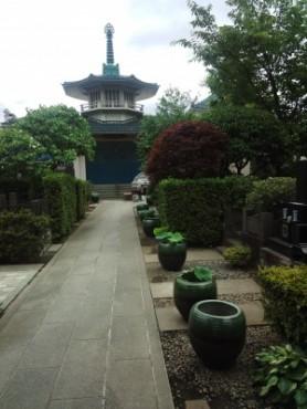 今朝の福性寺の参道です