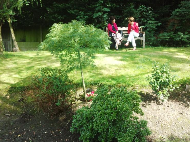 ジャス教授のお墓 日本のカエデの木 この木の根元に教授の遺灰が眠っています