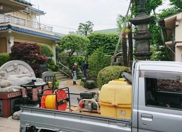 昨日(5月7日)午前中  植木屋さんによる木々の消毒