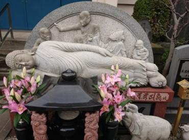 今日の涅槃仏 新しいお檀家も昔からのお檀家も涅槃仏様のまえを通り客殿や庫裡(くり)の玄関に参ります