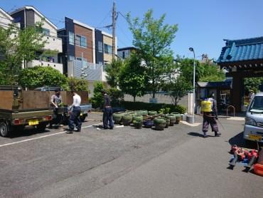 本日早朝蓮の鉢が25到着しました 5人の植木職人さんが頑張っています