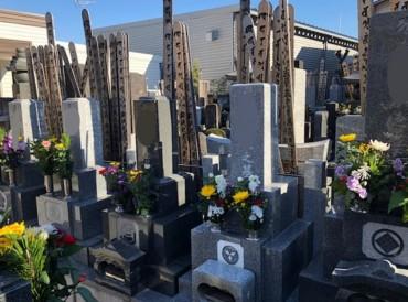 ほとんどのお墓には供花があります