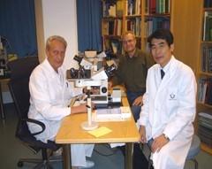 平成18年2006年12月にドイツ・ビースバーデン市での食道癌の専門家会議での招待講演のあとバイロイト市の病理学研究所でストルテ教授に食道の病理標本を見せて頂きました(3泊)標本のデータをプレゼンして帰国しました 帰国後データに基づき論文を書きました でも泊めて頂いた立派なホテルと立派な朝ご飯(スモークサーモン ニシンの酢漬けなどのビュッヘ)しか覚えていません(笑)食道疾患に関するセカンドオピニオンでしたら専門性の高いお話ができます