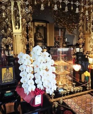 すべての仏様はご本尊様の両脇にある曼荼羅マンダラの中にお帰りになります